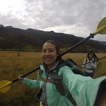 Hiking through the New Zealand bush