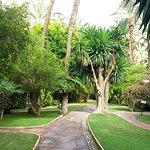 Photo de Hotel Huerto Del Cura