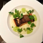 Salmon with cheddar and pea risotto