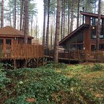 The cabins aren't overlooked and are well spaced apart
