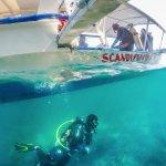 Scandi Divers Foto