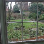 View of the garden from library window