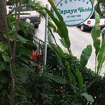 Photo de Hotel Pousada Papaya Verde