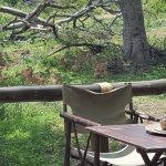 Foto de Tuningi Safari Lodge