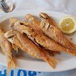 Osiem małych rybek = 24 euro!