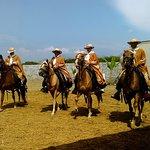 Foto de Caballos Peruanos de Paso