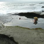 Pacific ocean tide pools.
