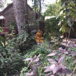 Bhudda and garden