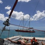 Sunbathers in the net