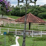 Foto de Hotel Estancia Atibainha Resort & Convention