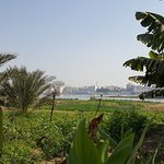 Views to the Nile