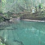 Photo of Ardent Hot Springs