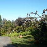 Lavendar Farm Garden, Maui