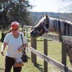 Mom feeding carrots to one of the horses