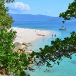 Book your trip to Fitzroy Island with us - 5% off tour prices if you do!