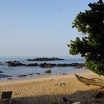 Photo de 1010226