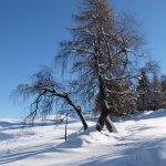 Foto di Silence & Schlosshotel Mirabell
