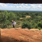 Picnic shelter on reserve
