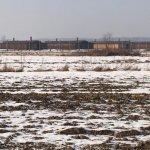 Auschwitz-Birkenau in January
