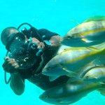 Foto de Caribbean Sea Sports Dive Shop