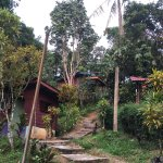 Photo of Durian Chalet
