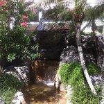 pool area so pretty