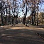 Stefan cel Mare Park