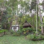 Maya Mountain Lodge Foto
