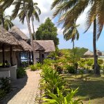 Photo de Big Blu Mafia Island Diving Resort