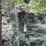 Jungle River Lodge Foto