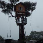 La casa del arbol , Baños Ecuador