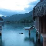 Sofitel Moorea Ia Ora Beach Resort Foto