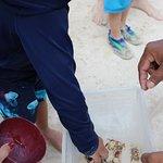 Foto de Stingray Beach