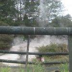 mystische heiße Quellen ( Tauranga )