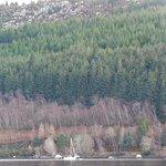 Photo de Loch Ness Shores