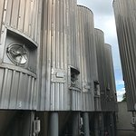 Glycol-jacketed fermentation tanks