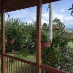 Photo of Casa Hotel Alto del Coronel