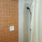 Shower area separated by a dilapidated shower curtain