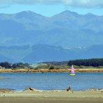 Manawatu Estuary (8km - 10 minute drive)