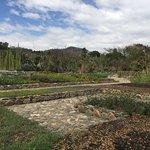 Photo de Ethnobotanical Garden