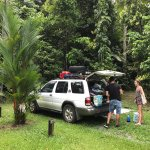 Photo de Lync-Haven Rainforest Retreat, Cabins, Camping & Wildlife Experience