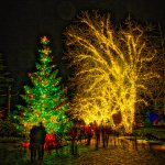 Christmas time in the gardens