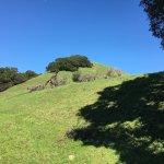 Garin Regional Park-bild