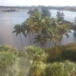 View of Lagoon from our room