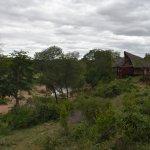 Lukimbi Safari Lodge Resmi