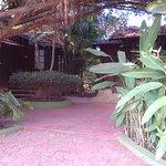 Foto de The Fern Gardenia Resort