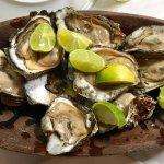 ostras frescas