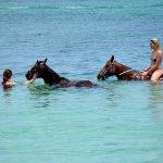 Riding bareback in the sea