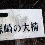 Tsukasaki no Kusu