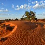 Tsondab Valley Scenic Reserve Foto